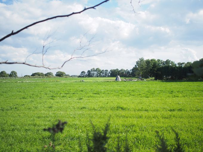 町村農場ミルクガーデンの目の前に広がる牧歌的な草原