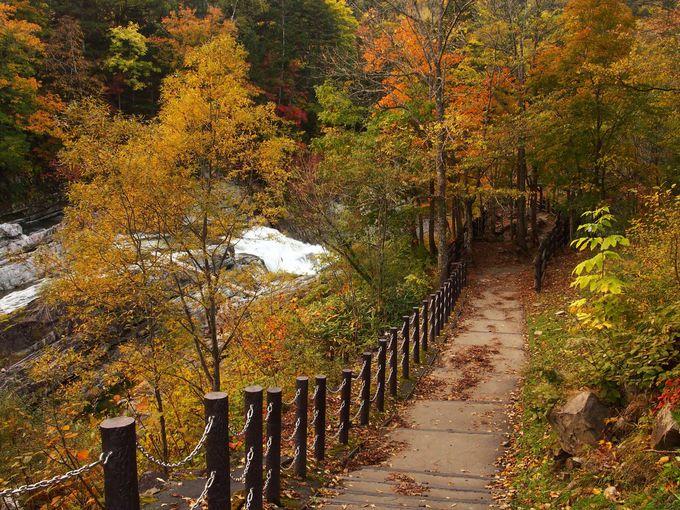 遊歩道を歩いて三段滝のある場所へ