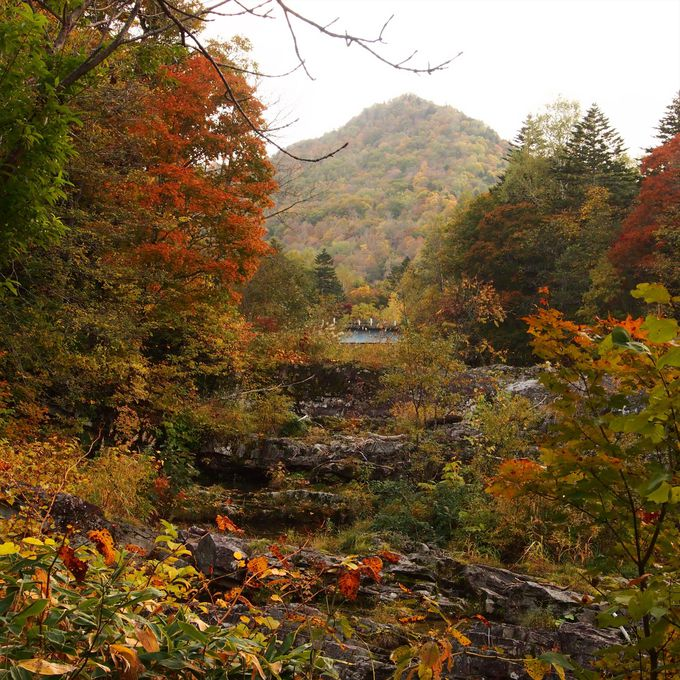 他の場所より一足早く訪れる、三段滝公園の秋の景観