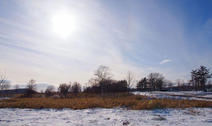 冬の道東が持つ空気感を味わう