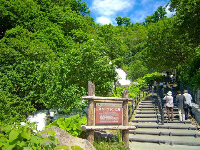 癒しポイントその2:滝をかこむ深緑でプチ森林浴!