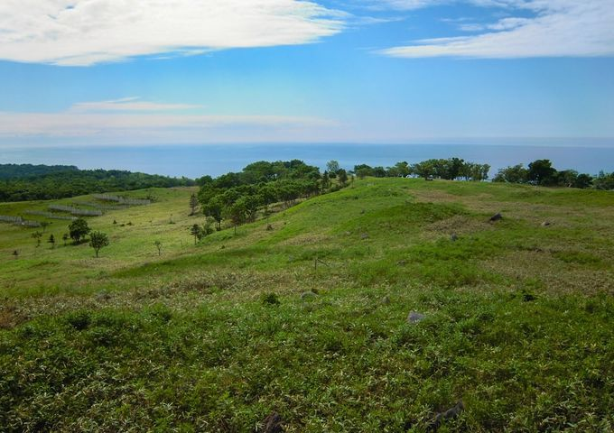 撮影シーンその2:オホーツク海側の丘にもカメラを向けよう!