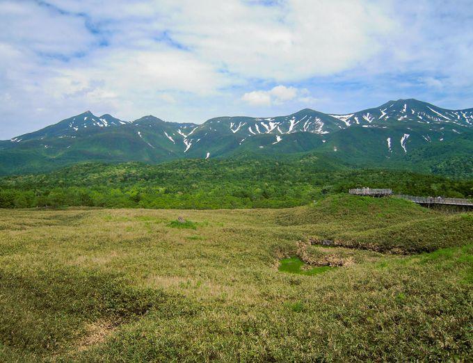 撮影シーンその1:まずは雄大な知床連山を撮影!