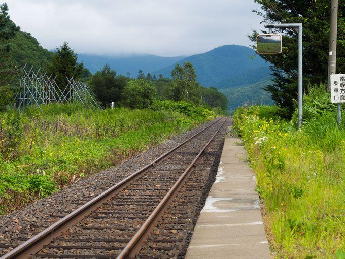 山間に存在する鉄路を前に、時間を忘れてみる