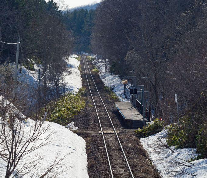橋からの豊ヶ岡駅ホームの撮影は望遠域で