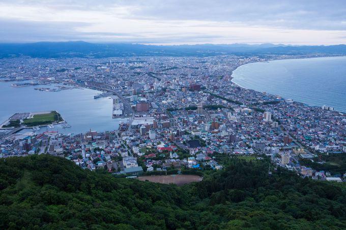 定番の景色である函館市街を一望