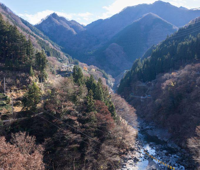 ゲストハウス錦のすぐ外に広がる、山奥の大自然