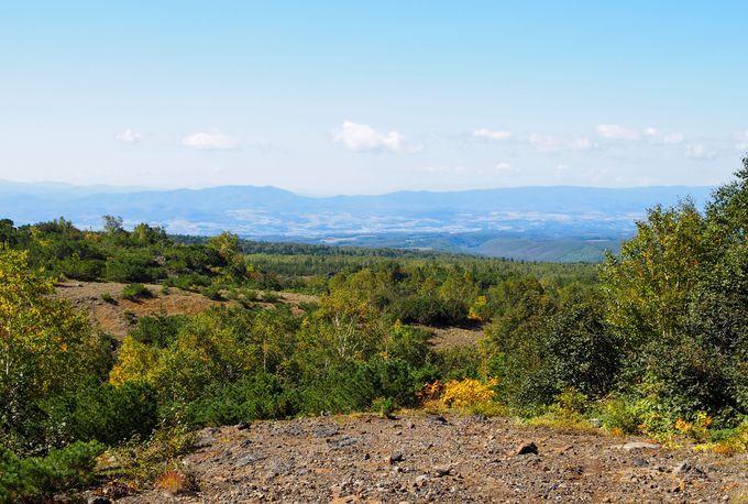 山岳風景だけでなく富良野盆地を眺めることも可能