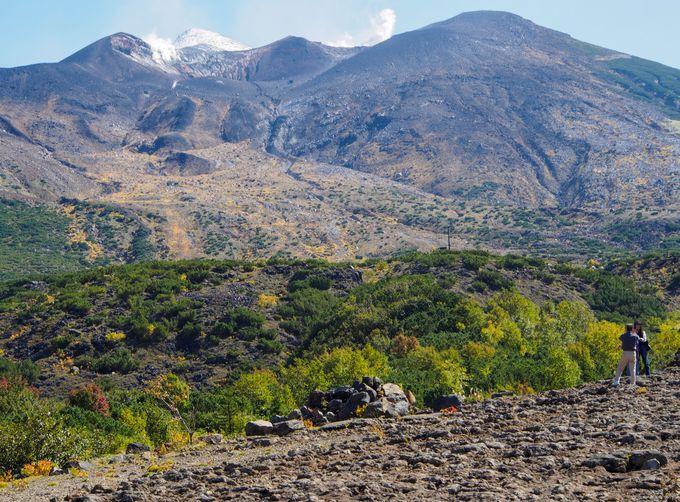 十勝岳望岳台を訪れる際は、気象庁の活動状況をチェック