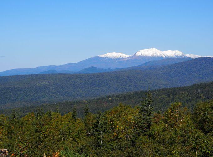 間近に雄大な山岳風景が広がる十勝岳望岳台