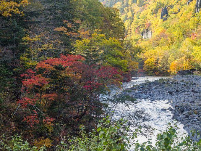 道々213号線の先にある、風光明媚な渓谷の紅葉