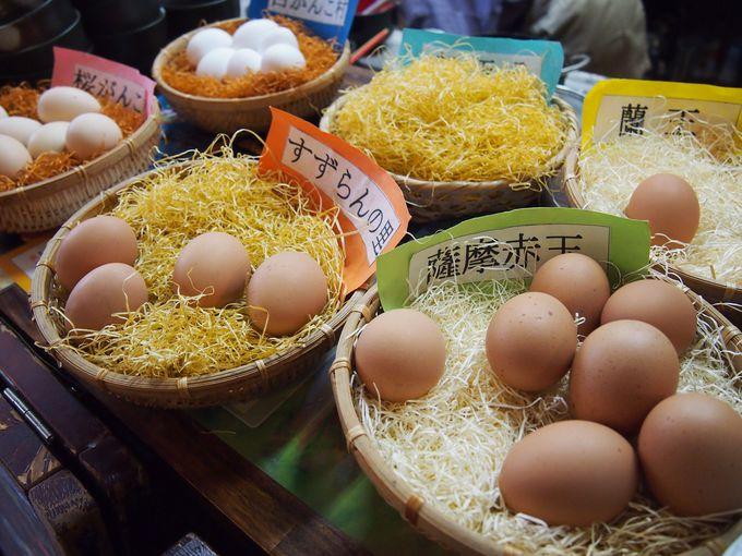 6種類の卵から好きなものを選ぼう