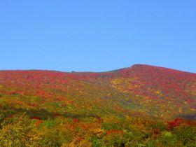 紅葉で赤色になる山!栗駒山(宮城側)いわかがみ平・花山峠