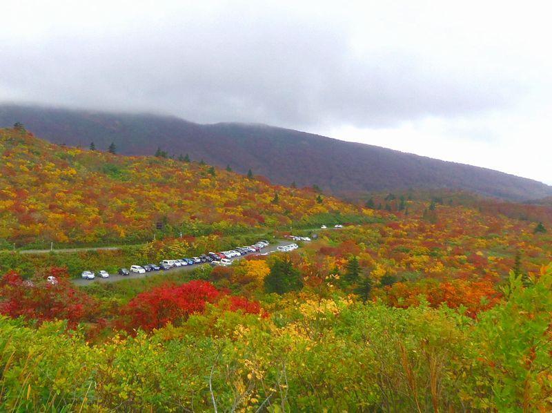 紅葉と絶景温泉で秋を満喫!栗駒山(秋田側)須川高原