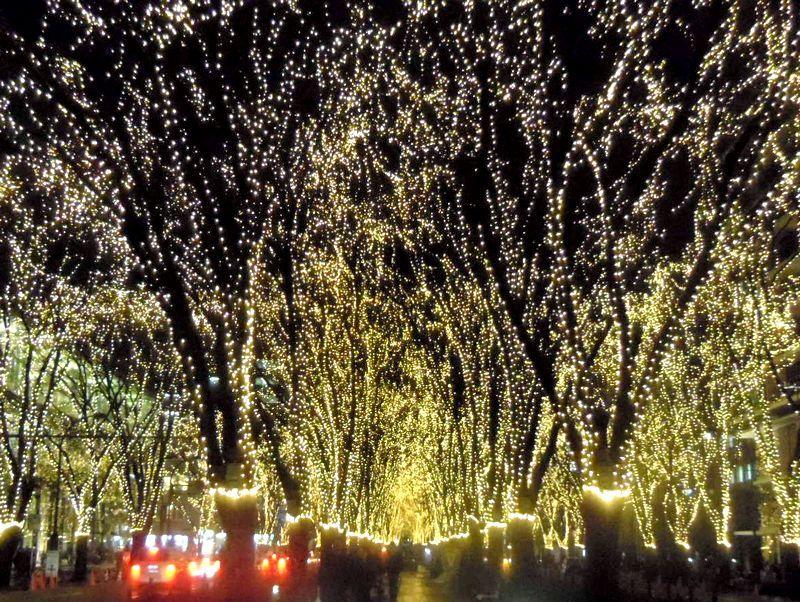 杜の都が光の都に〜SENDAI光のページェント