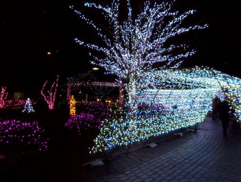 カラフルイルミ等々〜勾当台公園でお祭り気分を満喫