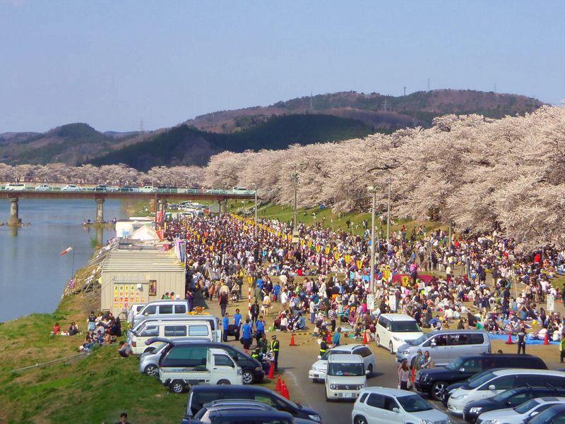 白石川堤のメイン会場「おおがわら桜まつり」そしてゴールの大河原駅