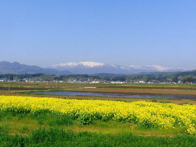 春になっても〜残雪で真っ白な蔵王連峰