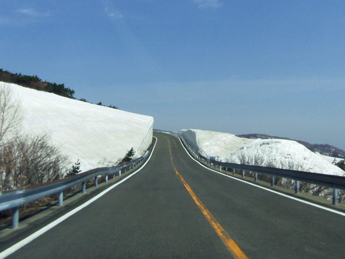標高が上がるにつれて春から冬の景色となり〜やがて雪の壁が登場!