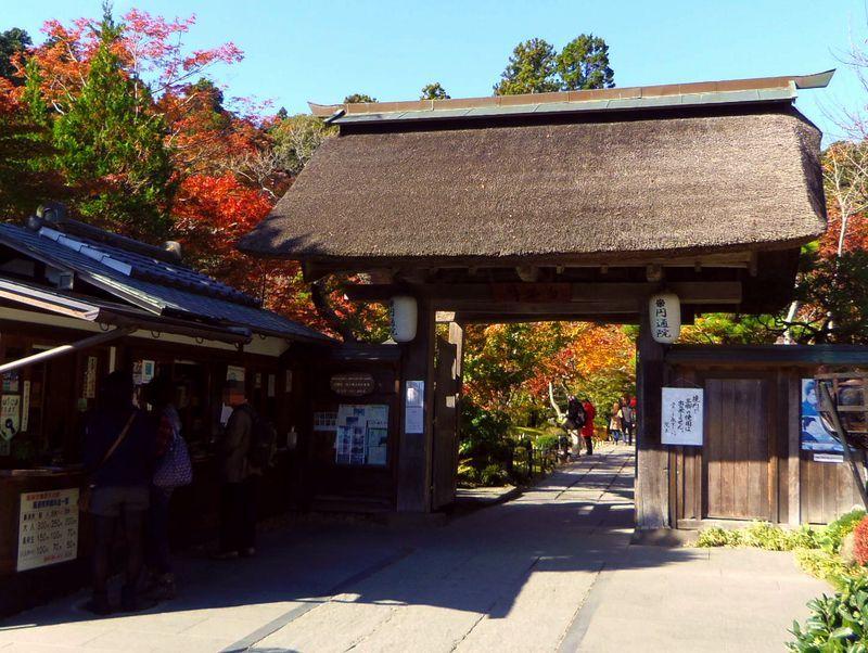 松島を代表する紅葉の名所「円通院」