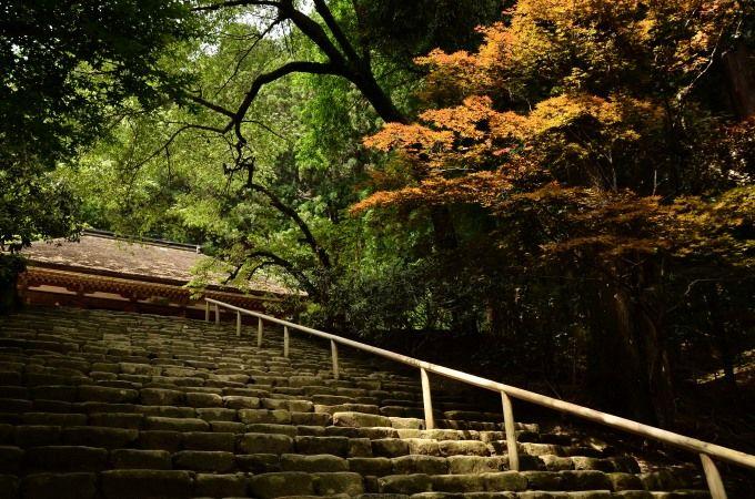 国宝 室生寺「金堂」