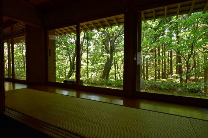 身を包む「お茶室の眺め」