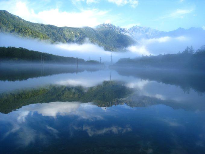 ついに!!朝もやに浮かび上がる大正池!!