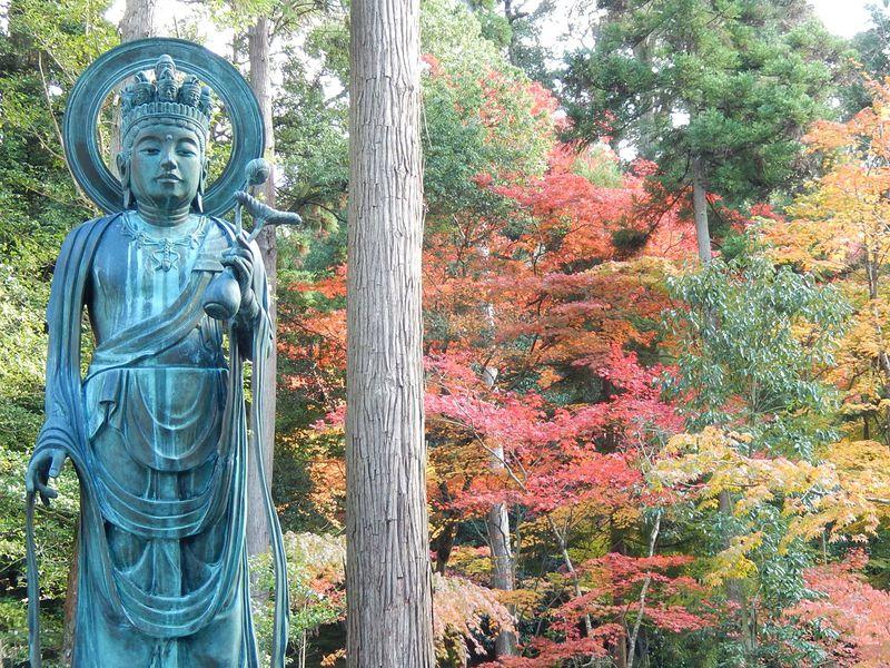「百済寺」「西明寺」を覗いてみよう!