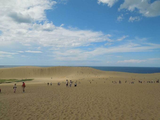 ちょっと足を伸ばして、鳥取砂丘へ