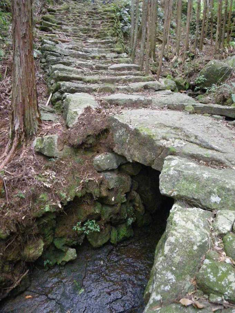 熊野古道《伊勢路》〜伊勢神宮から熊野までの170キロ