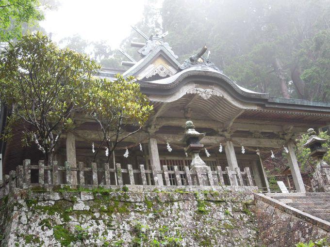 8.玉置神社