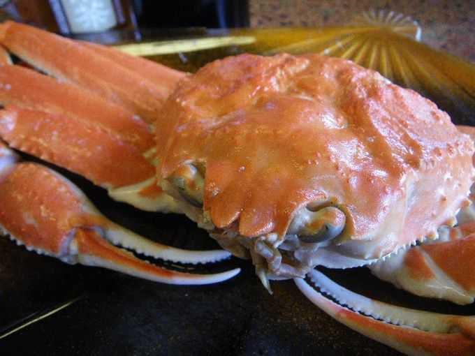 『ズワイガニ』って、どんな蟹