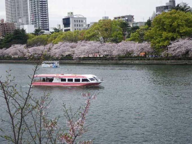 大阪のど真ん中で優雅にお花見〜大川さくらクルーズ