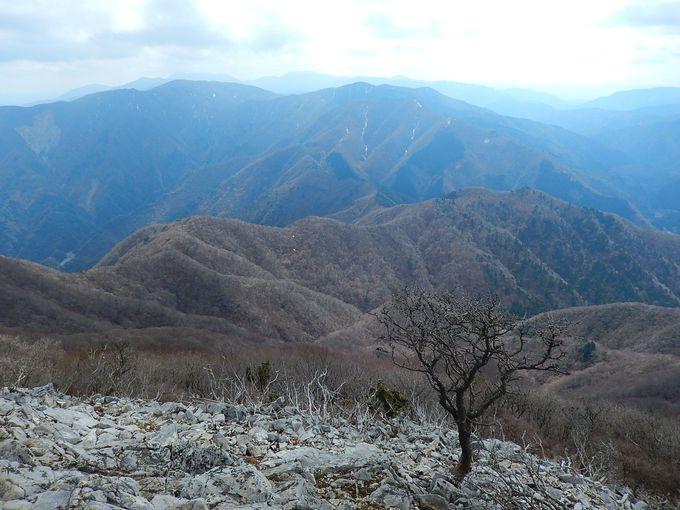 山頂からの360度展望は絶景!