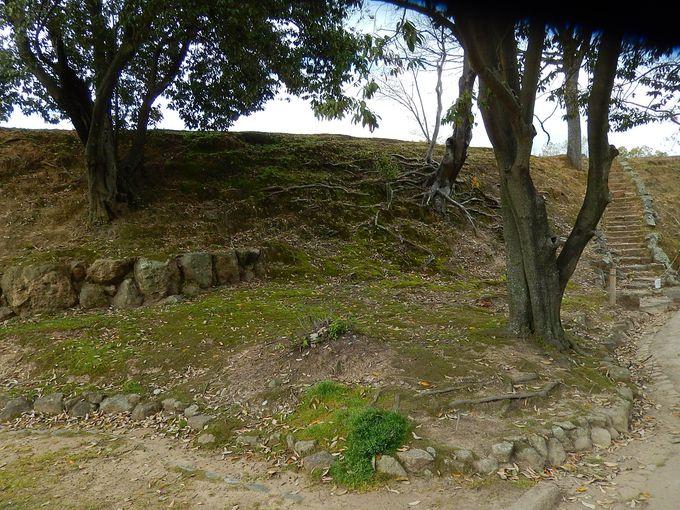 城壁の内側・特別史跡『土塁(どるい)』の桜がナンバー2