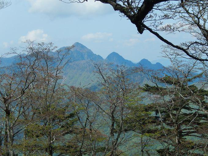 いよいよ近畿の最高峰・八経ヶ岳を極め、明星ヶ岳へ