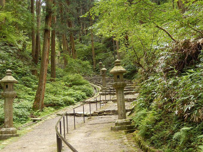 比叡山内の移動:比叡山内シャトルバスか徒歩(東海自然歩道)で
