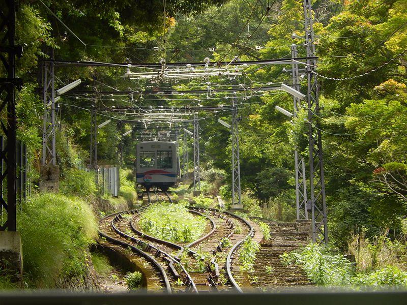 日本一の称号を持つ2つのケーブルカーで比叡山を横断