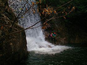 神戸・裏六甲で全身ずぶ濡れ!「シャワークライミング」に挑戦