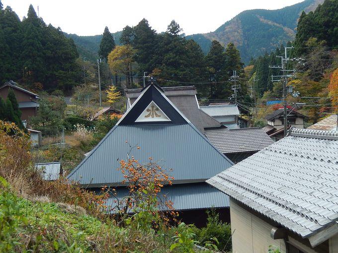 秋なら落ち葉が美しい登山道
