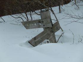 滋賀の赤坂山で雪遊び!スノーシューで心も体もホッカホカ