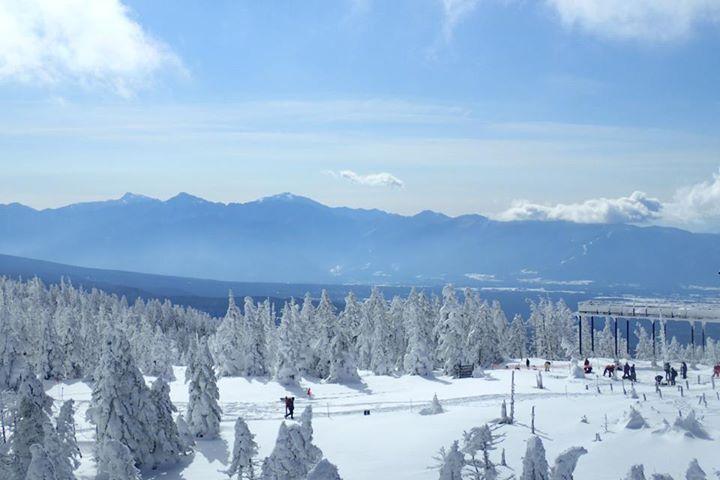 標高2400メートルに白い海老が?!〜北八ヶ岳で雪山入門