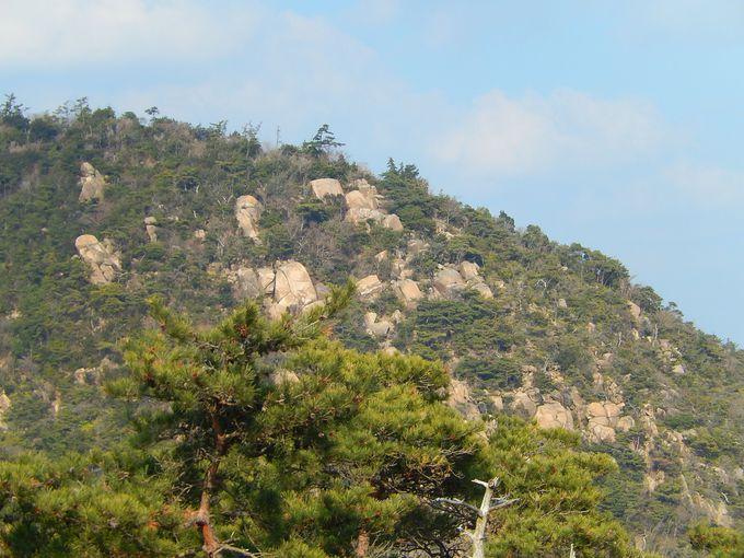 岩梯子を登り切ろう