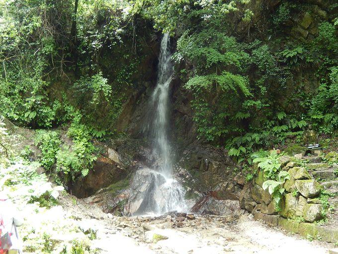 櫛羅の滝(くじらのたき)登山道
