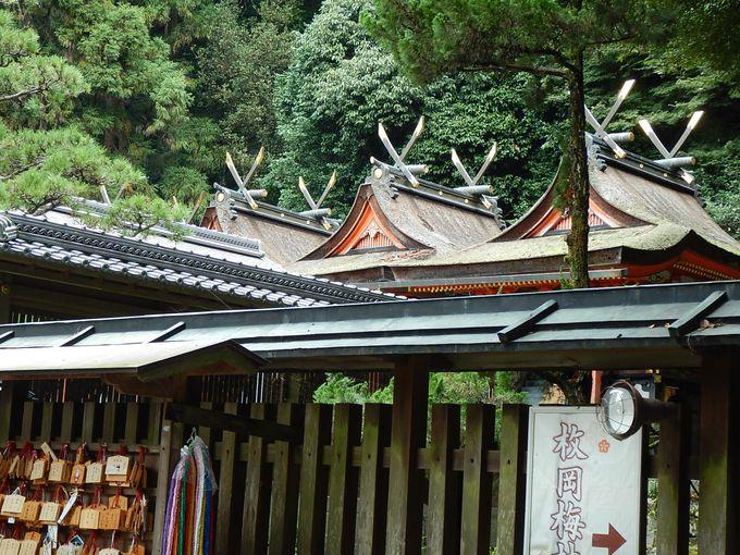 枚岡神社を起点に、出発!