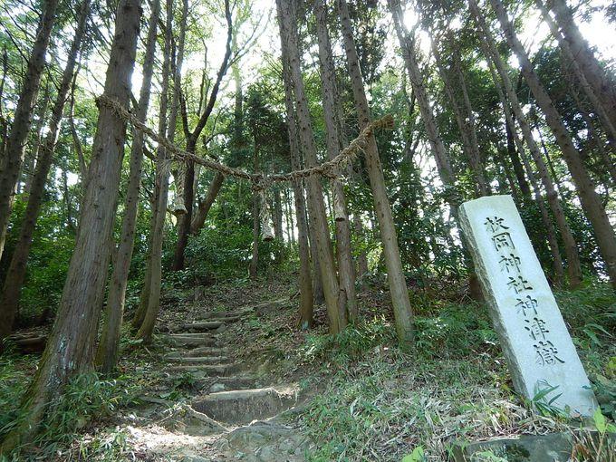 神津嶽を経て、枚岡展望台へ