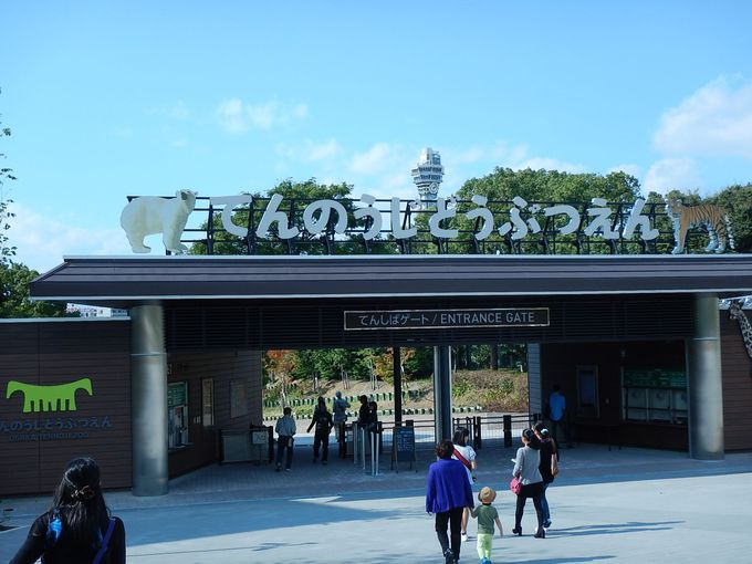 4.天王寺動物園