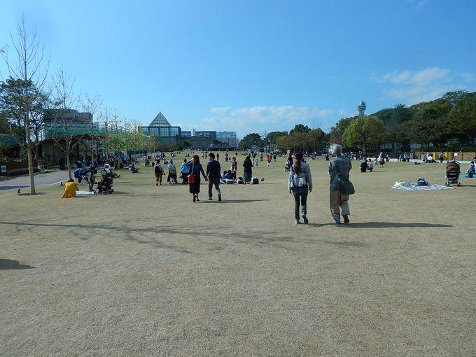 天王寺駅前が、すっかり、スッキリ!