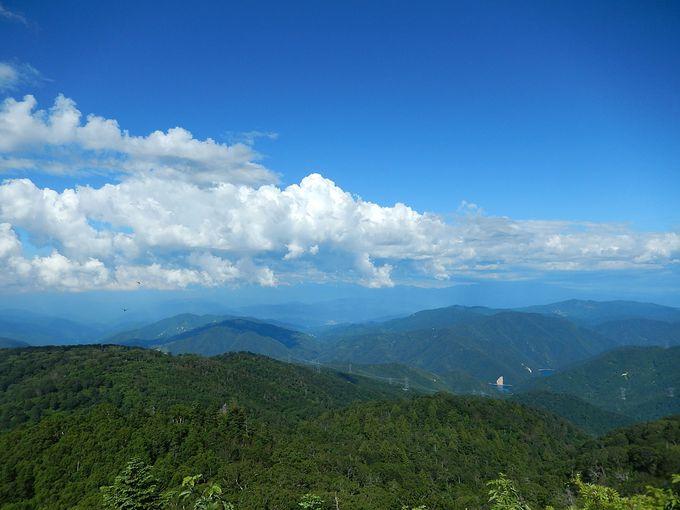 急坂を登り切れば大展望の山頂
