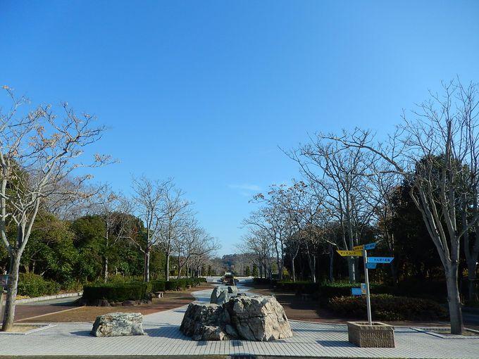 広大な元・塩田につくられた赤穂海浜公園